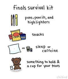 finals-study-kit